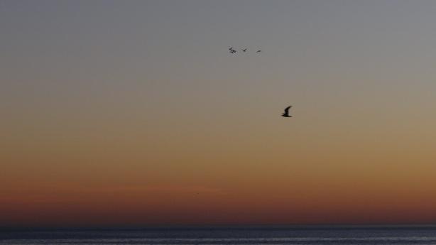 nada más que el cielo y el horizonte...